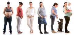 fotoreportage zwangerschap evolutie